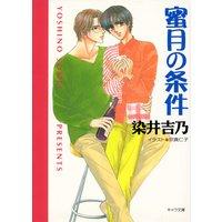 蜜月の条件 嘘つきの恋(2)