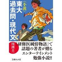 〈小説〉東大過去問・現代文