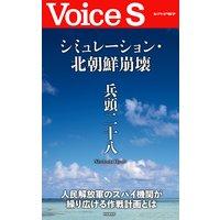 シミュレーション・北朝鮮崩壊 【Voice S】