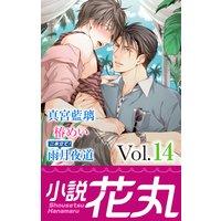 小説花丸 Vol.14【イラスト入り】