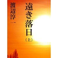遠き落日 (上)