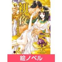 【絵ノベル】初夜〜王女の政略結婚〜 3