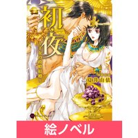 【絵ノベル】初夜〜王女の政略結婚〜 4