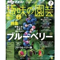 NHK 趣味の園芸 2017年7月号