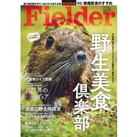Fielder vol.35