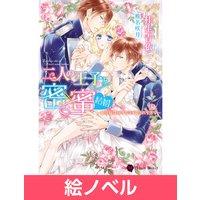 【絵ノベル】二人の王子と密×蜜 結婚〜姫花嫁は溶けるほど愛されすぎて〜