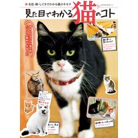 見た目でわかる猫のコト