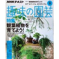 NHK 趣味の園芸 2018年9月号