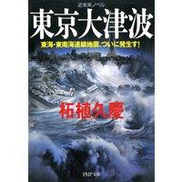 近未来ノベル 東京大津波 東海・東南海連鎖地震、ついに発生す!