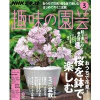 NHK 趣味の園芸 2019年3月号