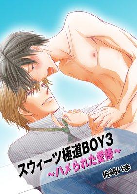 スウィーツ極道BOY2 〜××したい愛棒〜